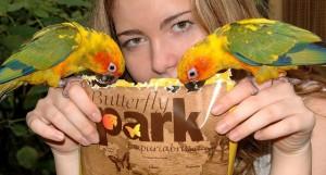 butterfly-park-empuriabrava