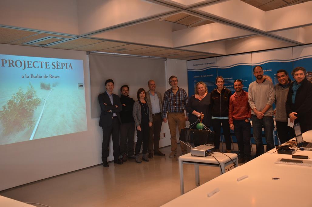 Arrenca a l'Escala un projecte per afavorir la reproducció de la sèpia a la badia de Roses