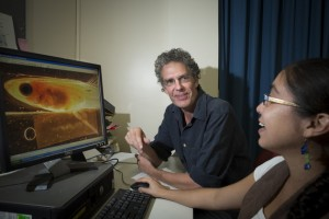 La grandària dels genitals masculins del peix mosquit no té efecte sobre el seu atractiu, segons l'estudi d'investigadors de la Universitat Nacional d'Austràlia.