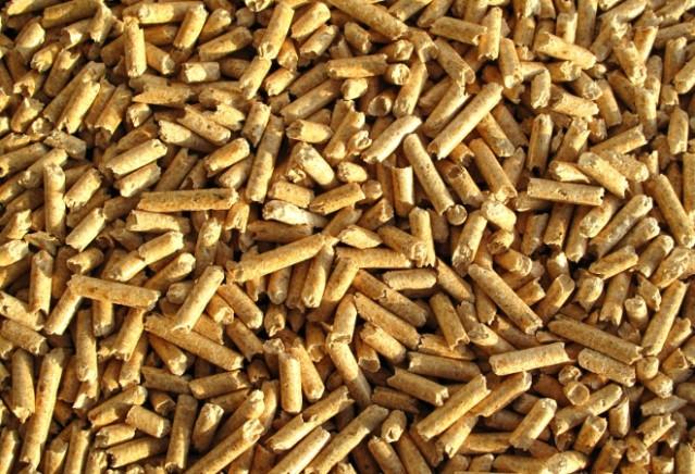 Navata acull un curs d'instal·lació i manteniment de calderes de biomassa per a professionals