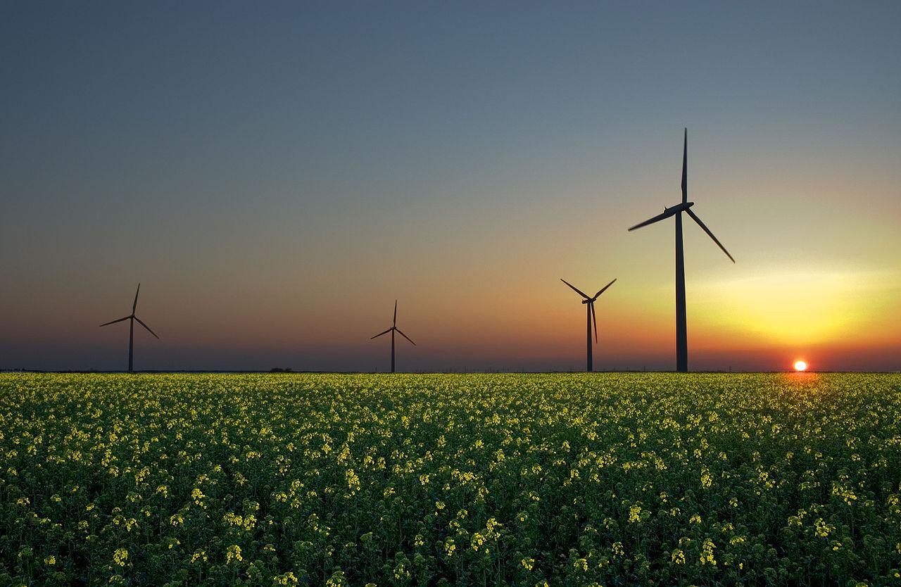 ERC presentarà una moció per impulsar el consum d'energia verda a Roses