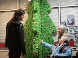 concurs-de-pessebres-i-arbres-de-nadal-de-roses