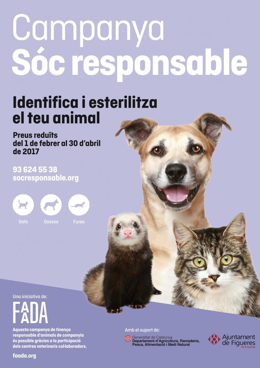 """L'Ajuntament de Figueres torna a promoure la campanya """"Sóc responsable"""", d'identificació i esterilització d'animals domèstics"""