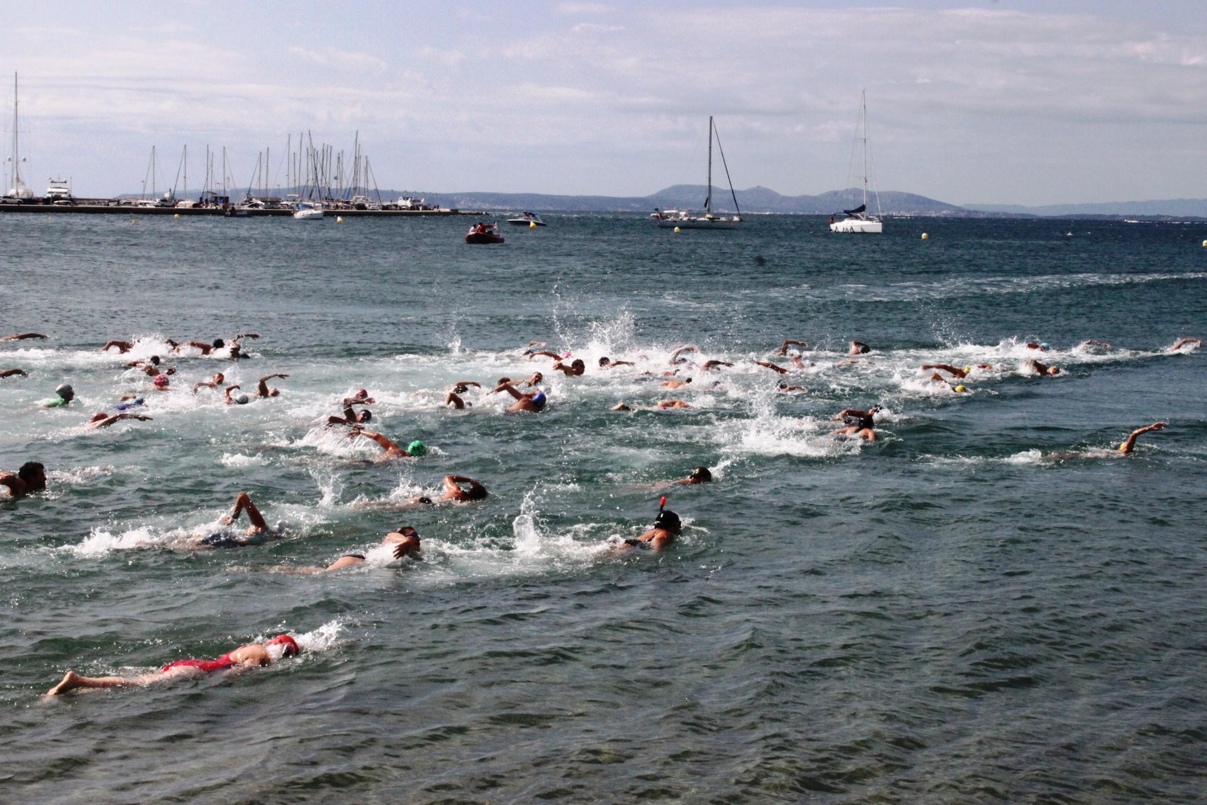 Obertes les inscripcions per participar a les Travessies de natació de Roses 2017