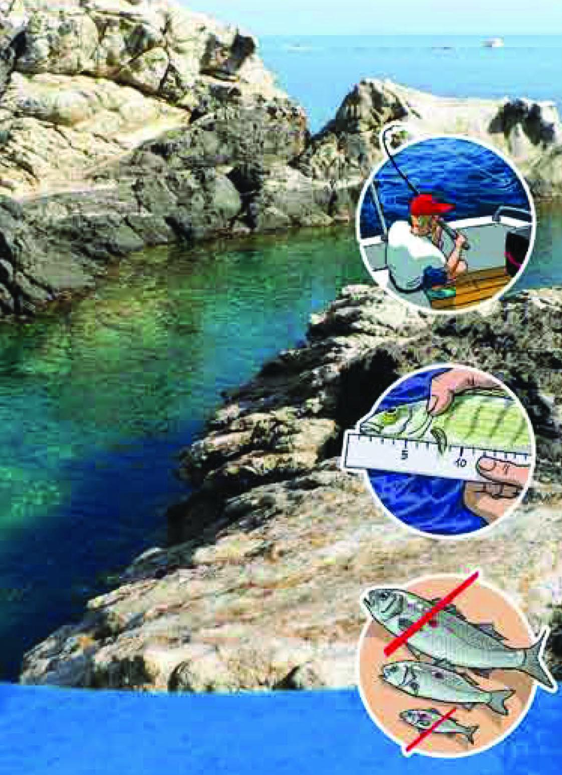 Roses inicia una campanya de conscienciació sobre pesca recreativa responsable amb el medi ambient