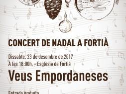 concert de nadal a fortia