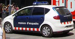 Els Mossos d'Esquadra detenen un home a Figueres per cometre cinc estrebades