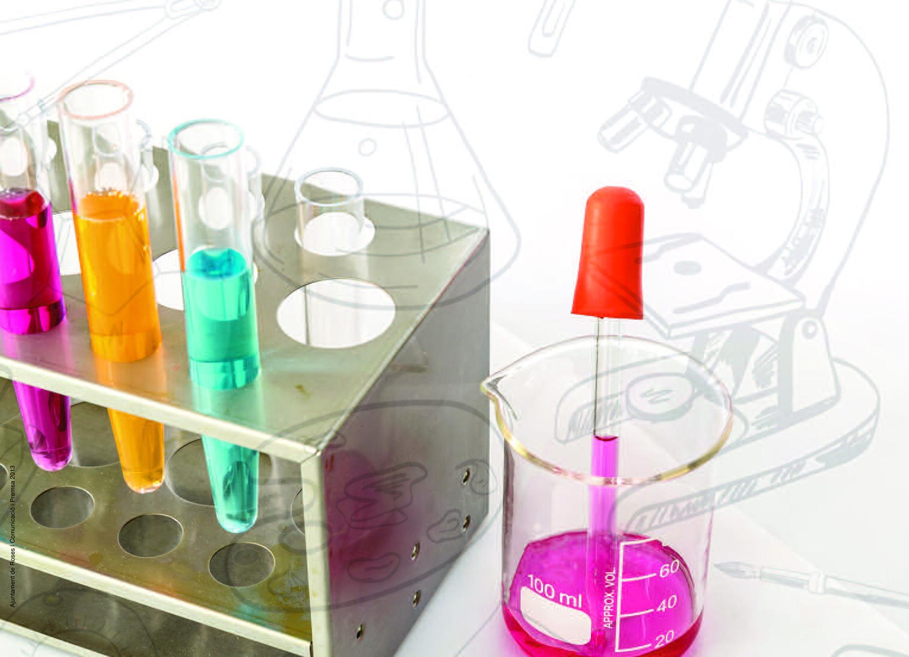 """Experiments presentats per alumnes i una xerrada científica formen la """"I Jornada de la Ciència de Roses"""""""