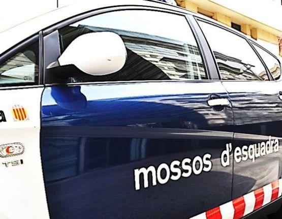 Detinguts 15 membres d'una organització criminal que operava des de Roses, Banyoles, Cornellà de Terri i Girona