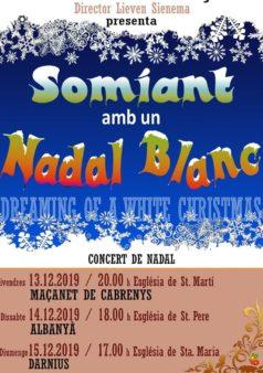 Concerts-de-Nadal