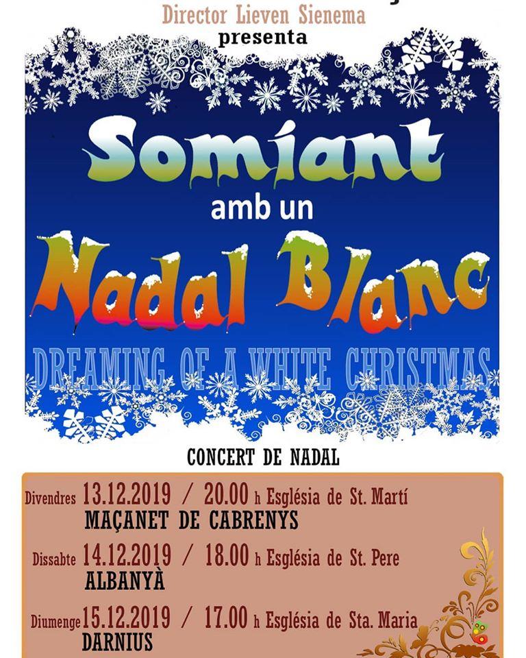 Concerts de Nadal