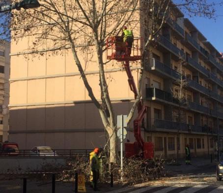 S'inicien els treballs de poda de les branques dels plataners del carrer Jonquera i avinguda Perpinyà