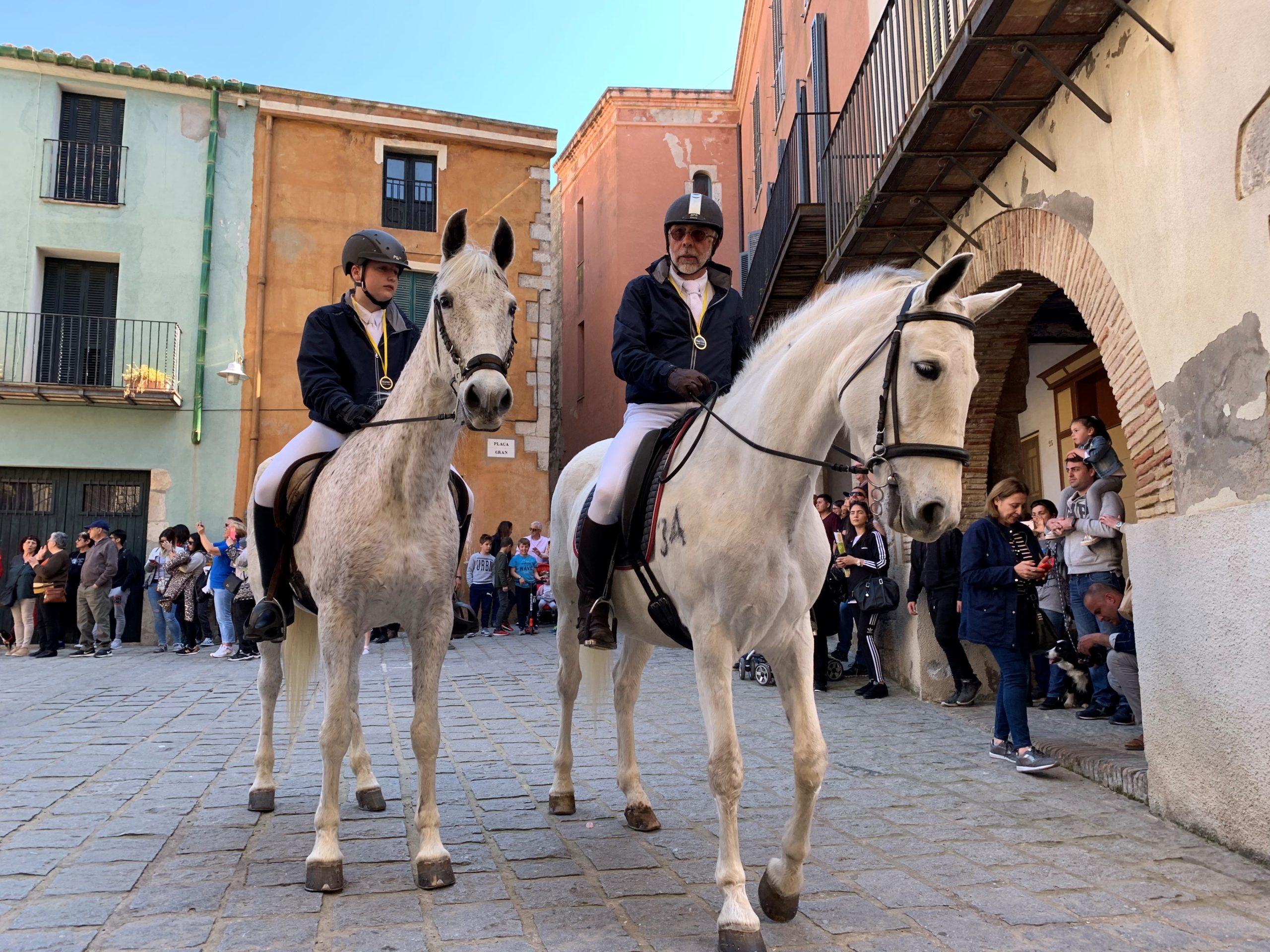 Cavalls i genets es preparen per la celebració de 35a Gran Cavallada de Peralada