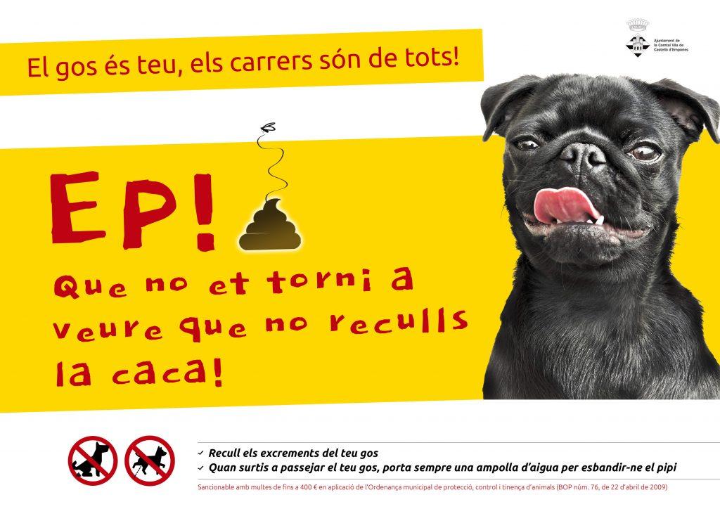 Castelló fa una crida a la ciutadania perquè es recullin els excrements dels gossos