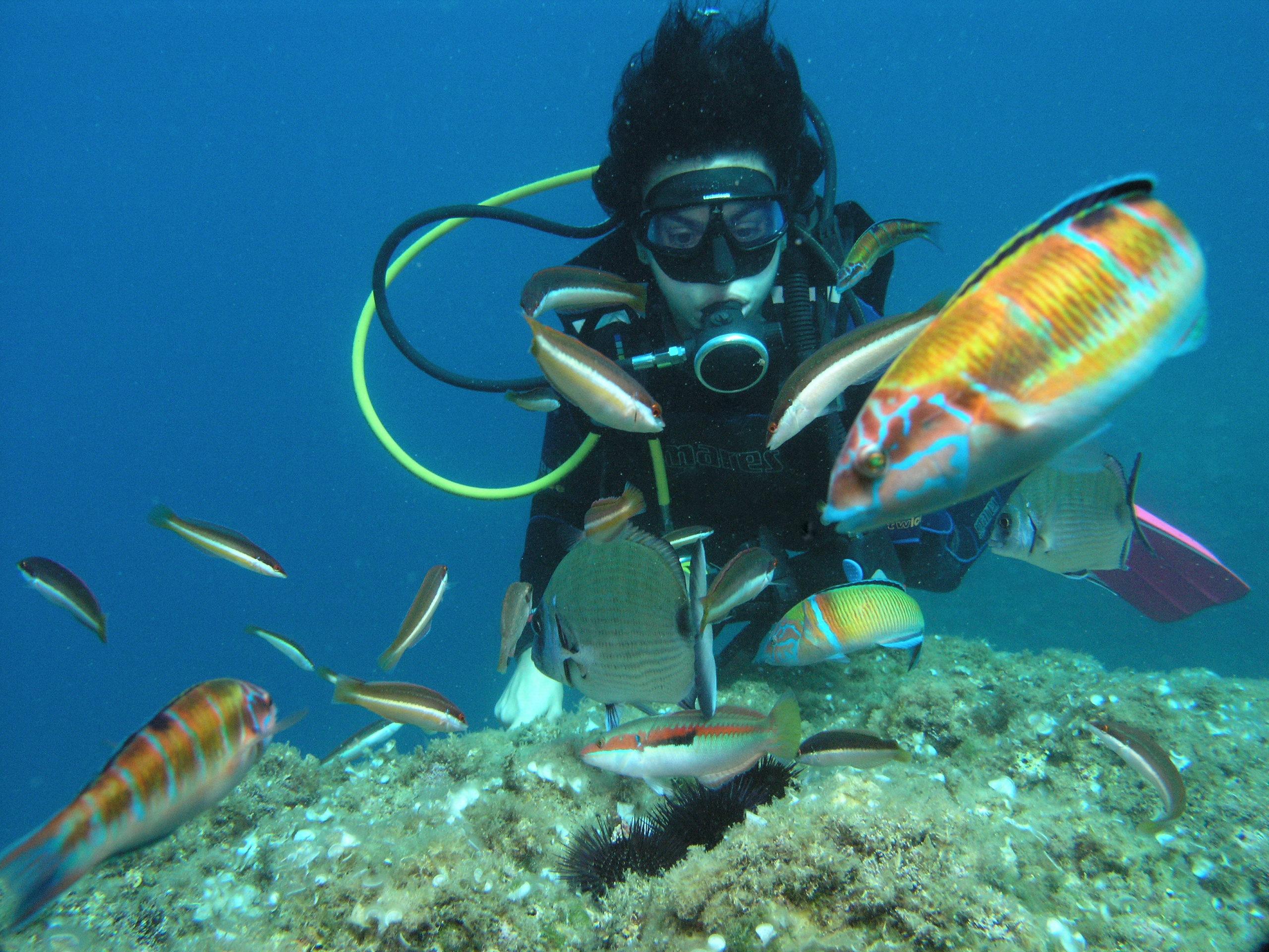 Un estudi de la Càtedra Oceans mostra que bussejar comporta beneficis per a la salut mental de les persones