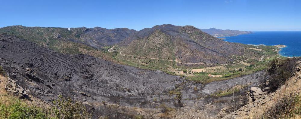 L'incendi forestal de Llançà continua actiu, tot i que el perímetre no hagi crescut