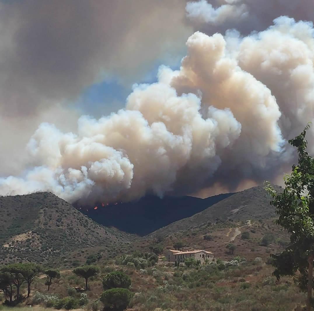 Incendi entre Llançà o Port de la Selva